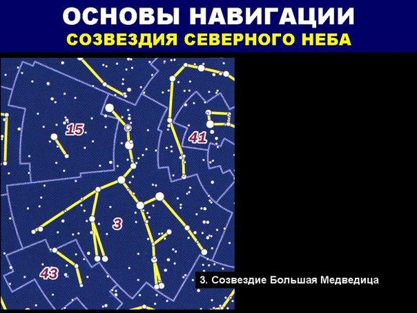 разные созвездия ленобласти в декабре фото что показывают нам